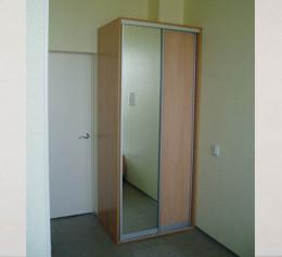 Двери для шкафа купе с недорогим наполнением