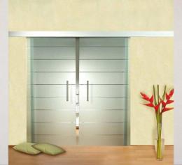 Дверь для шкафа купе матовое стекло