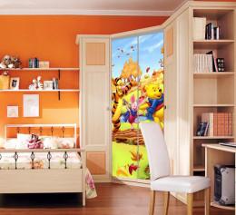 Шкаф купе в детскую комнату 2 х дверный