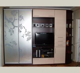Шкафы купе в гостиную с телевизором с пескоструем