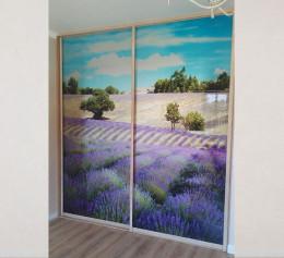 Встроенный шкаф купе в спальню с фотопечатью на стекле